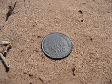 Holbrook Expeditions - 1942 Wheatback penny as found...